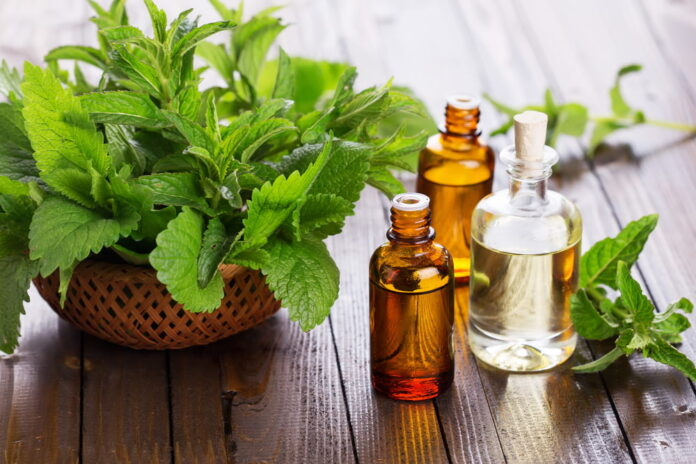 Benefits and uses of peppermint oil - Peppermint Oil